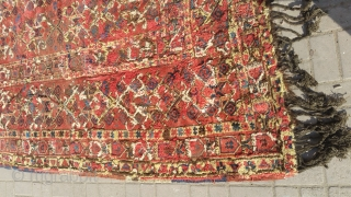 Antique bashiri girgi Rug.
