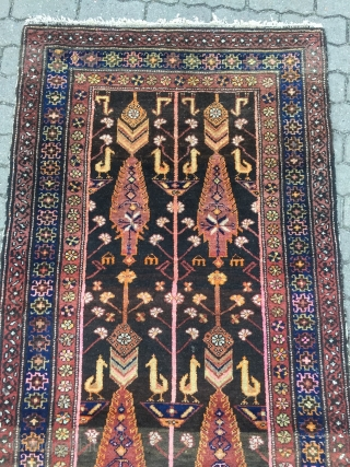 Antique Persian Bakhtiary tree of life rug with birds and animals, age: circa 1920, size: ca. 240x100cm / 7'9''ft x 3'3''ft