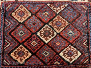 Charming south persian bagface. 100% organic dyes. Reasonable.