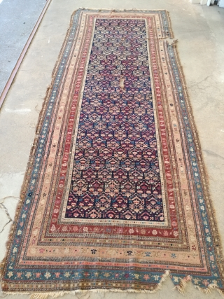 Antique Shirwan rug with demages. 310/120 cm.