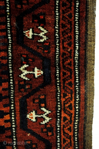Fine Baluch, Camel ground field.  Beautiful glow!  180 x 80 Cm. 6 feet x 2.6 feet.  Perfect condition.  All natural dyes.