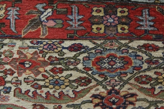 """3'4"""" x 3'5"""" Bidjar sampler. Decent shape. All there, with complete end and side finishes."""