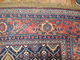 Antique Camel Bidjar 7'x13'.  Repair project rug.  Obvious tears on one corner.  Has some scattered low spots.