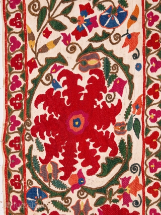 Uzbek Suzani from Bukhara 160 x 230 cm / 5'2'' x 7'6''