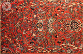 RG1195-