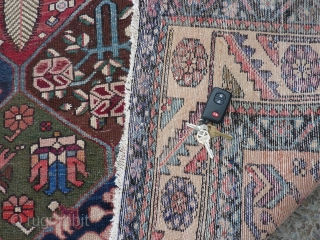 "Strange old Bakhtiari garden rug with very funky transitional dyes: 54"" x 80""