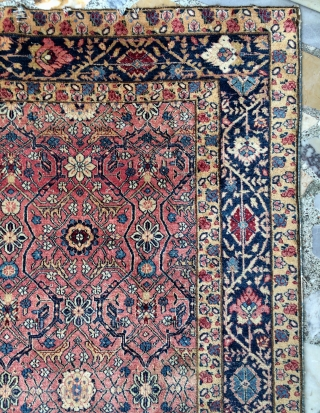 India Agra or Amritsar carpet size 223x153cm