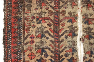 antique little camel ground baluch rug with tree elements and some unusual red dotting. I've never seen this before. Unfortunately this rug ran into a buzz saw and is nearly cut in  ...