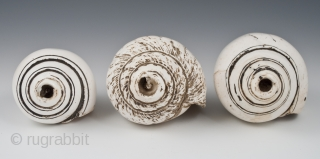 """Conch shell trumpets, Himalayas. 19th century. Sold separately.  Left: 7"""" (17.2 cm) long     Center: 6"""" (15.2 cm) long     Right: 7.5"""" (19 cm) long"""